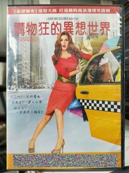挖寶二手片-Y57-059-正版DVD-電影【購物狂的異想世界】-艾拉費雪 休丹希 克萊斯汀瑞特 瓊安庫薩克