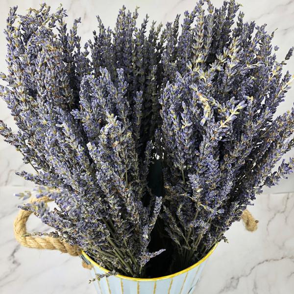 進口乾燥天然薰衣草:英國藍-乾燥花圈 乾燥花束 拍照道具 室內擺飾 乾燥花材 裝飾鄉村風-3元/支