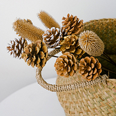 【BlueCat】鐵絲長梗 天然乾燥松果 楓果拍照道具 插花 拍攝道具 居家裝飾 乾花 房間佈置
