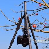 專業雲台三腳架雲台佳鑫悅攝影攝像支架單反三角架專業輕便便攜wy