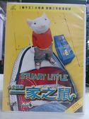 影音專賣店-B10-029-正版VCD*動畫【一家之鼠小史都華】-米高福克斯