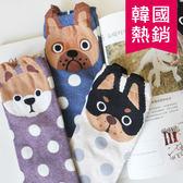 韓國 熱銷  逗趣 可愛 小狗 四分襪 襪子