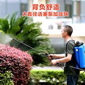 市下牌15L農用農田花園藝消毒花卉噴霧打藥器打藥機噴藥機噴霧器igo   電購3C