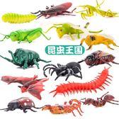 昆蟲玩具仿真動物套裝蟲子動物玩具蜘蛛螞蟻蜜蜂塑膠兒童恐龍玩具【店慶8折促銷】
