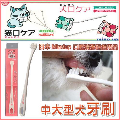 『寵喵樂旗艦店』日本 Mind Up《中大型犬用牙刷》特殊刷頭傾斜15度,更容易刷牙 (大)