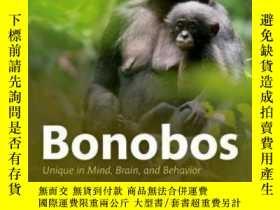 二手書博民逛書店Bonobos:罕見Unique In Mind, Brain,