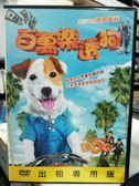 挖寶二手片-Y31-051-正版DVD-電影【百萬樂透狗】-西班牙寵物巨星cook領銜主演