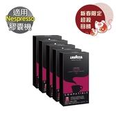 LV-04Y LAVAZZA Deciso 咖啡膠囊 五盒組 ☕Nespresso機專用☕