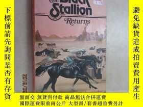 二手書博民逛書店biack罕見stallion returns 共199頁Y15