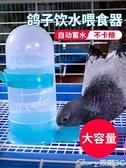 餵鳥器鴿子自動喂水飲水器水壺用品用具信鴿鸚鵡食盒食槽喂食喂鳥器鴿具 新品【99免運】