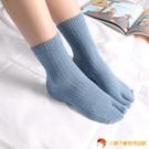 4雙裝 二趾襪分趾襪兩指襪保暖腳趾居家仿貂絨【小獅子】