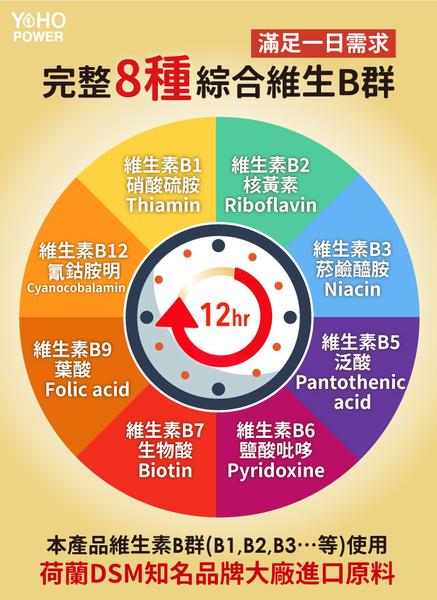 【SNQ認證】悠活原力 綜合維生素B群 緩釋膜衣錠(60粒/瓶) 悠活原力 防疫防護
