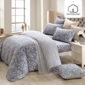 床包被套組 四件式雙人薄被套加大床包組/奧德曼灰/美國棉授權品牌[鴻宇]台灣製2013