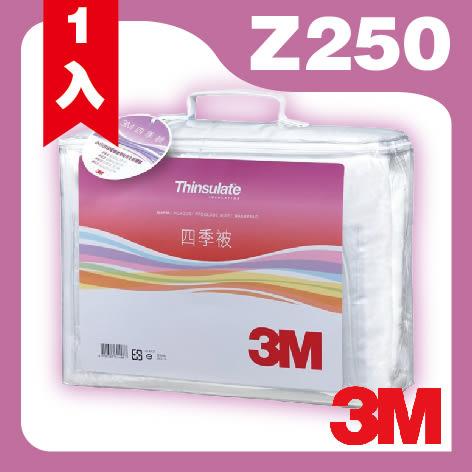 3M 新絲舒眠 Thinsulate Z250 四季被 標準雙人 可水洗 棉被 保暖 透氣 抑制塵蟎 (尺寸:6x7尺)