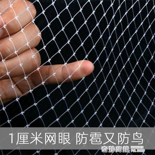 果園防鳥網葡萄大棚保護網家用果樹網防鳥用網魚塘養殖尼龍網戶外 奇妙商鋪