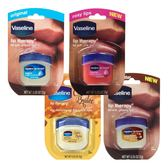 Vaseline凡士林 瓶裝護唇膏7g (原味/玫瑰/布丁/可可亞) ★Vivo薇朵