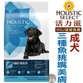 美國活力滋.成犬三種魚挑嘴美膚配方4磅(1.81kg),WDJ推薦飼料