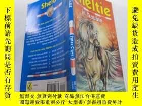 二手書博民逛書店Sheltie罕見in trouble謝爾蒂有麻煩了Y212829
