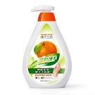 橘子工坊 碗盤洗滌液 溫和低敏 500ml/罐(清洗蔬果、奶瓶可用)