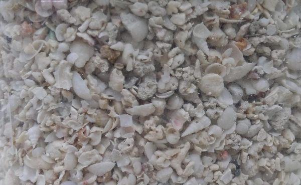 【西高地水族坊】台製MACRO美國生物鈣石-2.5KG