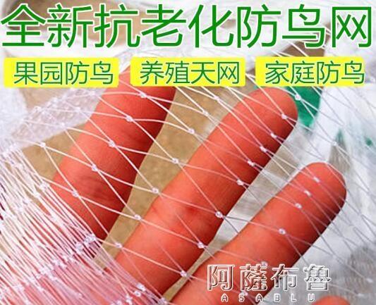 防鳥網 防鳥網透明白色綜絲尼龍防鳥網泥鰍養殖 葡萄果園果樹櫻桃魚線網 阿薩布魯