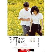 【停看聽音響唱片】【DVD】河豚