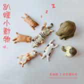【葉子小舖】趴睡小動物/睡到翻肚系列扭蛋/ZOO睡眠動物園T-ARTS同款/超療癒天然呆動物擺件