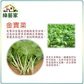 【綠藝家】A36.金寶菜種子500顆