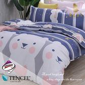天絲床包兩用被四件組 加大6x6.2尺 南瓜塔   頂級天絲 3M吸濕排汗專利 床高35cm  BEST寢飾