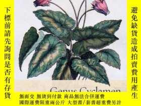 二手書博民逛書店【罕見】Genus Cyclamen: In Science, Cultivation, Art and Cult