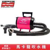 【24H出貨🚀】美國原裝-大都會馬卡龍小旋風吹水機-粉紅色 寵物吹水 車用吹水 輕量