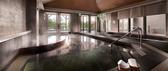 綠舞國際觀光飯店 風呂浴場+泳池游園雙人券
