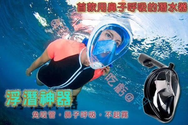 ☆貨比三家☆ 浮潛呼吸面罩 口鼻呼吸 游泳 潛水蛙鏡 浮淺  防水袋 非 迪卡農 呼吸管 玩水 浮潛