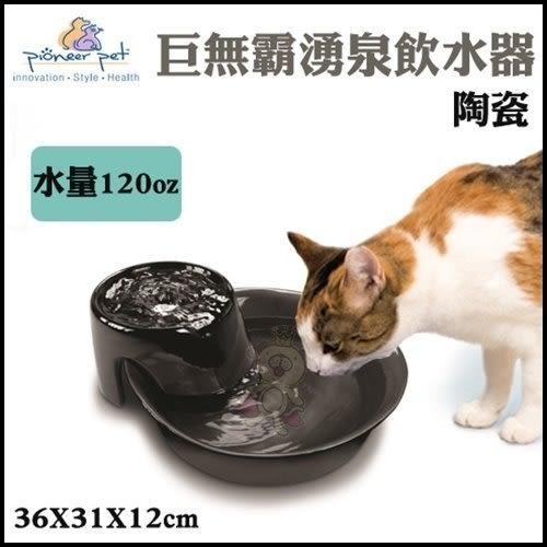 *WANG*Pioneer Pet 巨無霸湧泉飲水器(陶瓷 D156)