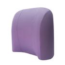 HOLA 高密度抗菌健康深曲線舒適腰墊紫...