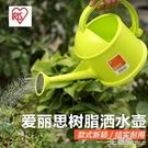 IRIS樹脂澆花壺小噴壺家用園藝花卉多肉植物灑水壺噴水壺 3C優購