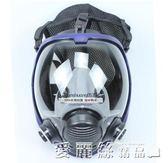 防毒面具全面罩球形大視野硅膠噴漆化工防甲醛粉塵防毒面具 愛麗絲精品