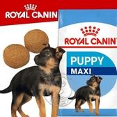 【培菓寵物48H出貨】SHN 法國新皇家飼料《大型幼犬MXP》4KG