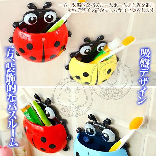 【zoo寵物商城】 浴室小幫手》可愛瓢蟲強力吸盤牙膏牙刷架/組