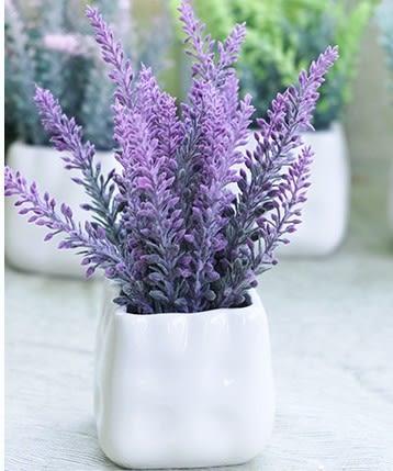 [協貿國際]小植物花藝盆栽單個價