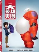 【停看聽音響唱片】【DVD】大英雄天團