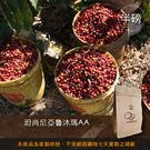 【咖啡綠商號】坦尚尼亞魯沐瑪AA咖啡豆(半磅)