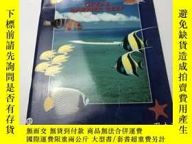 二手書博民逛書店GREAT罕見BARRIER REEFY383796