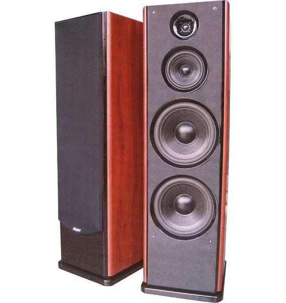 Pianor sa-1068音響喇叭4-8歐姆 250W 雙10吋喇叭.KTV喇叭.歌唱喇叭