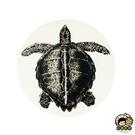 【收藏天地】台灣紀念品*神奇的陶瓷吸水杯墊-海龜∕馬克杯 送禮 文創 風景 觀光  禮品