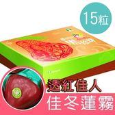 百大精品透紅佳人蓮霧2公斤(15粒)