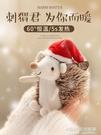 刺猬暖手公仔毛絨玩具布娃娃抱枕可愛玩偶小生日禮物送女孩圣誕節【尾牙精選】