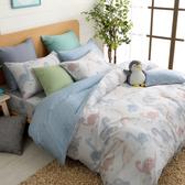 鴻宇 雙人兩用被床包組 天絲 萊塞爾 恐龍探險 台灣製2199