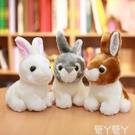 玩偶兔子毛絨玩具韓國可愛仿真兔兔公仔小白兔玩偶少女心娃娃小號女生LX