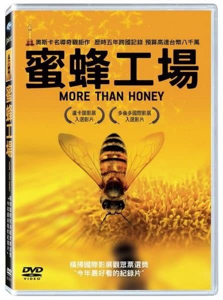 蜜蜂工場 DVD  (購潮8)